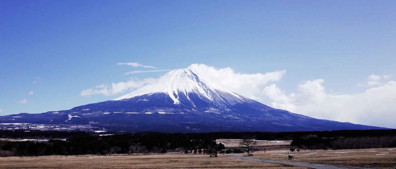 鶏っこ 富士山